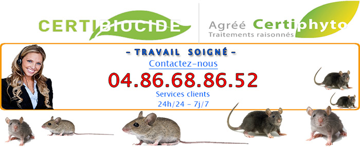 Deratisation Villeneuve-Loubet 06270